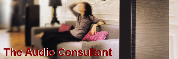 The Audio Consultant NZ