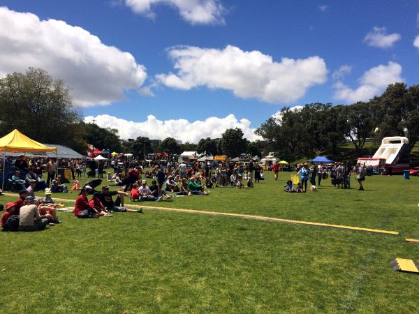 View From The Main Stage @ Grey Lynn Park Festival